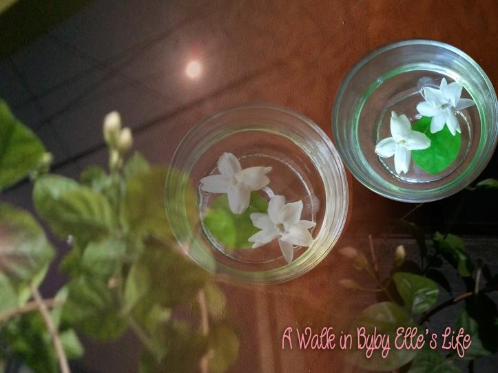 Jasmine at night bunga melati malam hari - a walk in bybyelle life