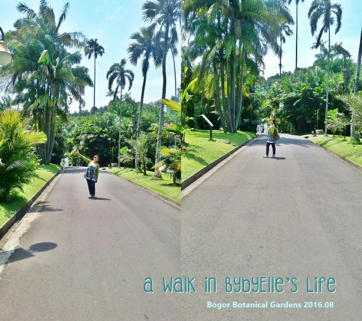20160802_121307_A Walk in BybyElle Bogor Botanical Gardens-path