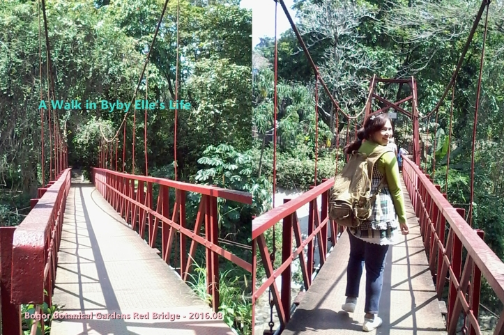 20160802_A Walk in BybyElle Bogor Botanical Gardens Red Bridge-path