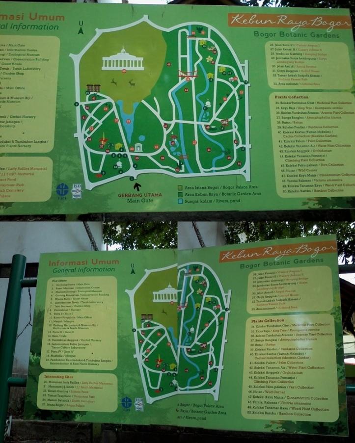 Kebun Raya Bogor Map Bogor Botanical Garden BybyElle